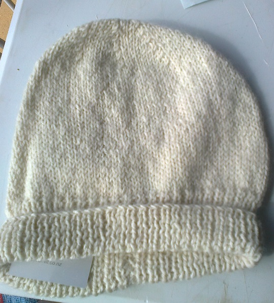 Adult Beanie With Brim