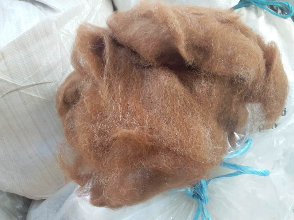 Brown/white Carded Alpaca Fibre